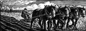 wood-engraving original print: Ploughing for Farmer's Glory